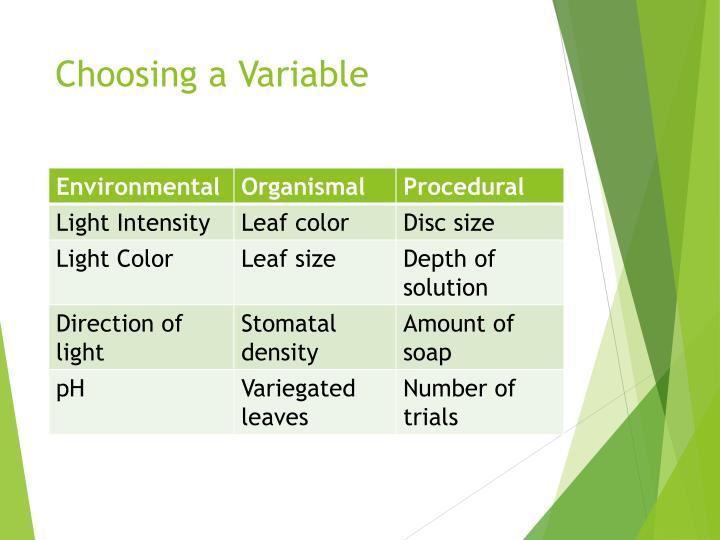 Choosing a Variable