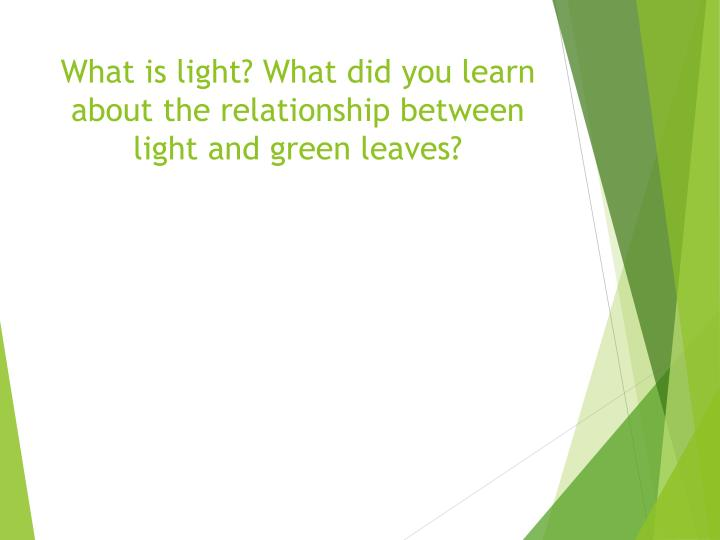 What is light? What did you learn about the relationship between light and green leaves?