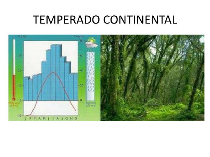 TEMPERADO CONTINENTAL