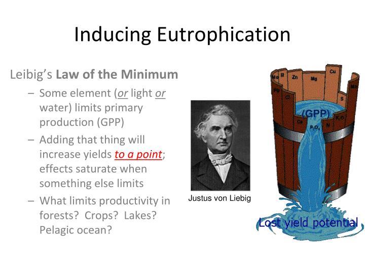 Inducing Eutrophication