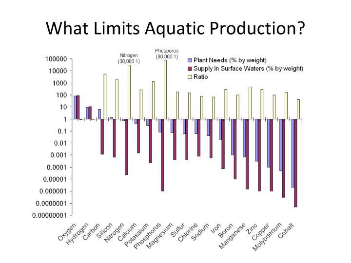 What Limits Aquatic Production?