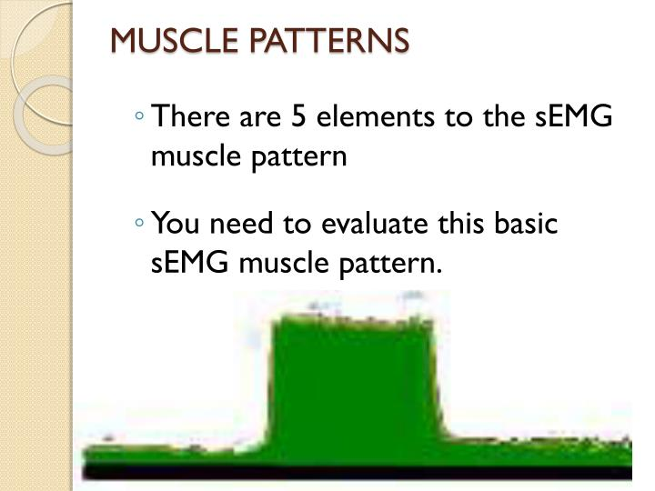 MUSCLE PATTERNS