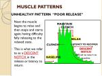 muscle patterns3