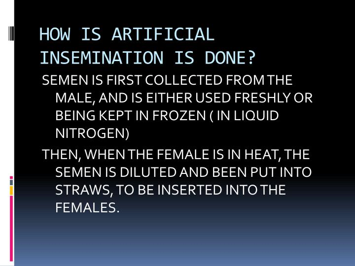 HOW IS ARTIFICIAL INSEMINATION IS DONE?