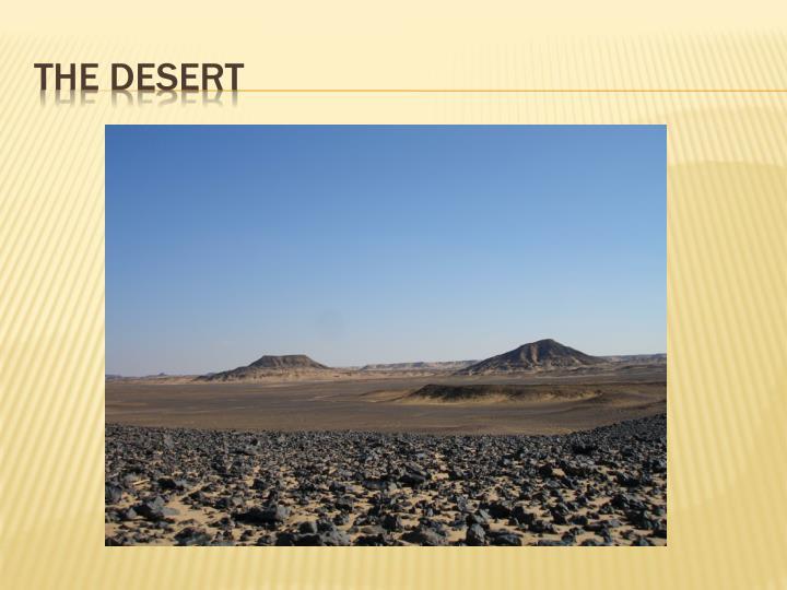 The Desert