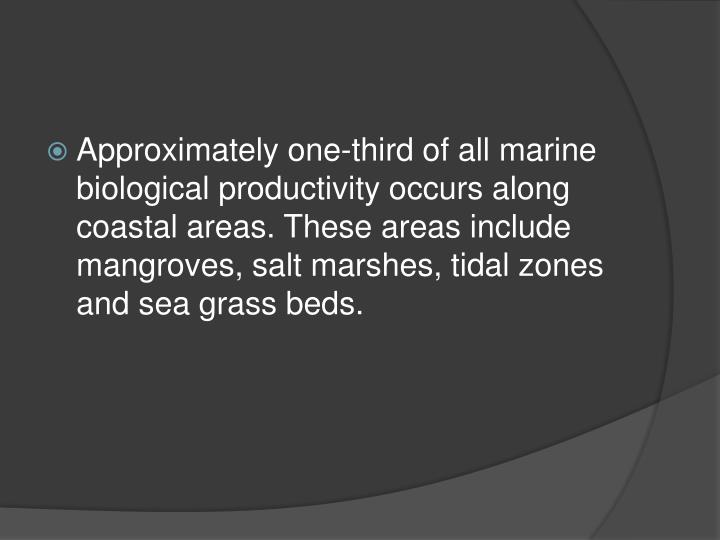 Approximately one-third of all marine biological productivity occurs along coastal areas. These areas include mangroves, salt marshes, tidal zones and sea grass beds.
