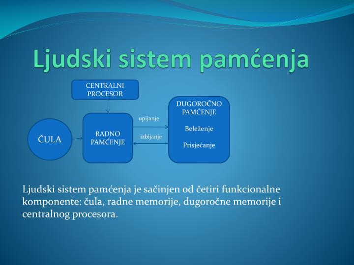 Ljudski sistem pamćenja