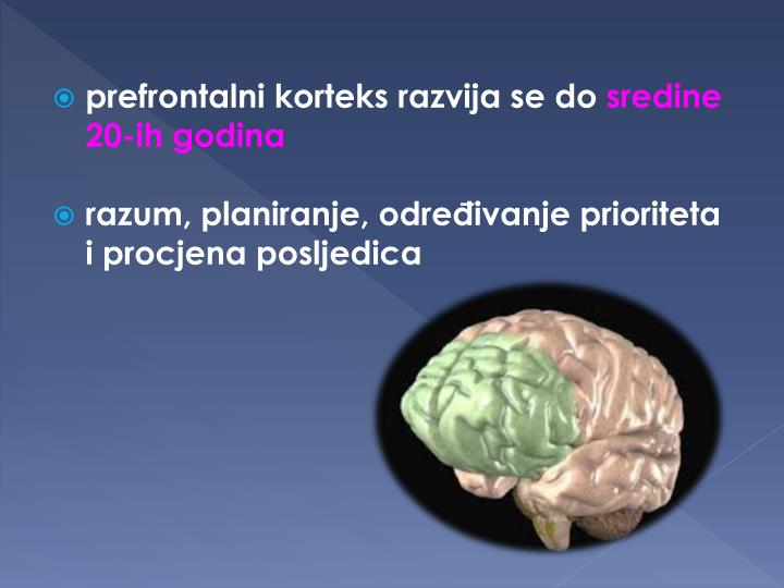 prefrontalni korteks