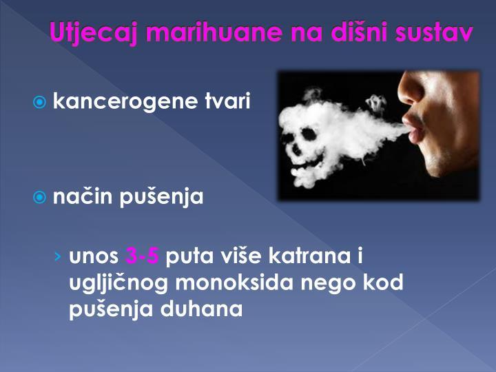 Utjecaj marihuane na dišni sustav