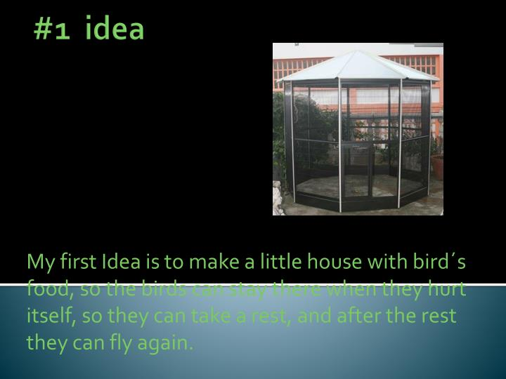 My first Idea is to make a little house with bird´s food, so the birds can stay there when they hurt itself, so they can take a rest, and after the rest they can fly again.
