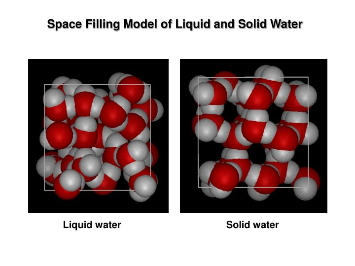 Space Filling Model of Liquid and Solid Water