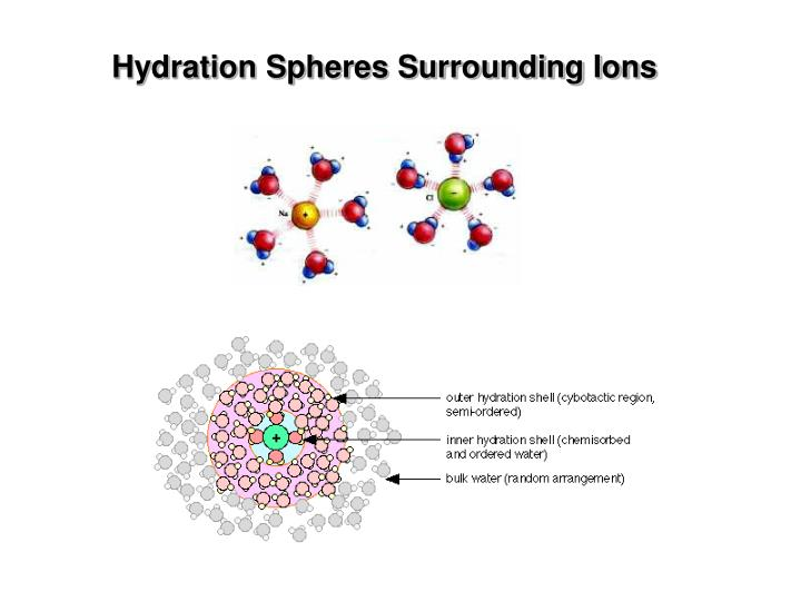 Hydration Spheres Surrounding Ions