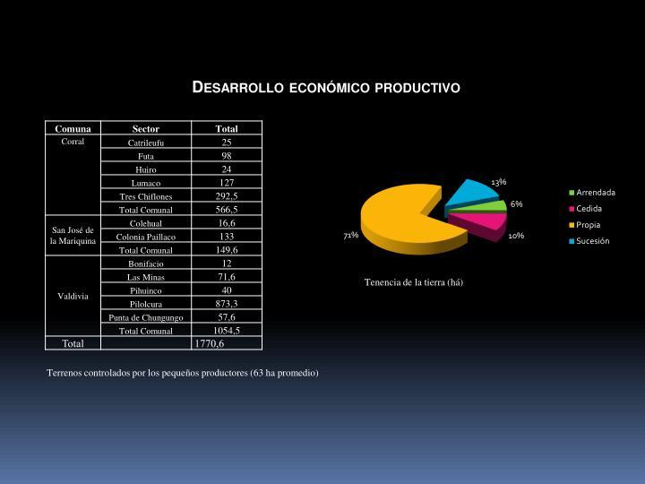 Desarrollo económico productivo