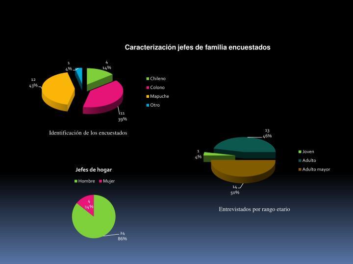 Caracterización jefes de familia encuestados