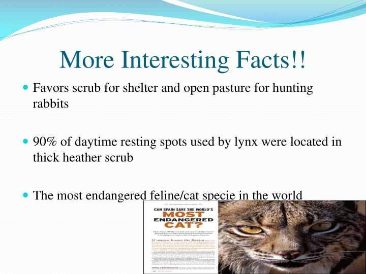 More Interesting Facts!!