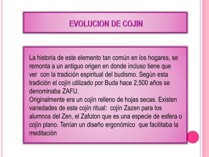 EVOLUCION DE COJIN