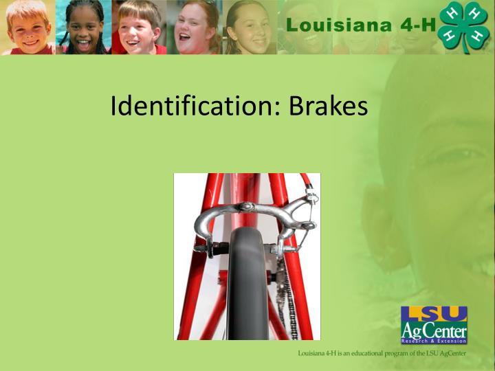 Identification: Brakes
