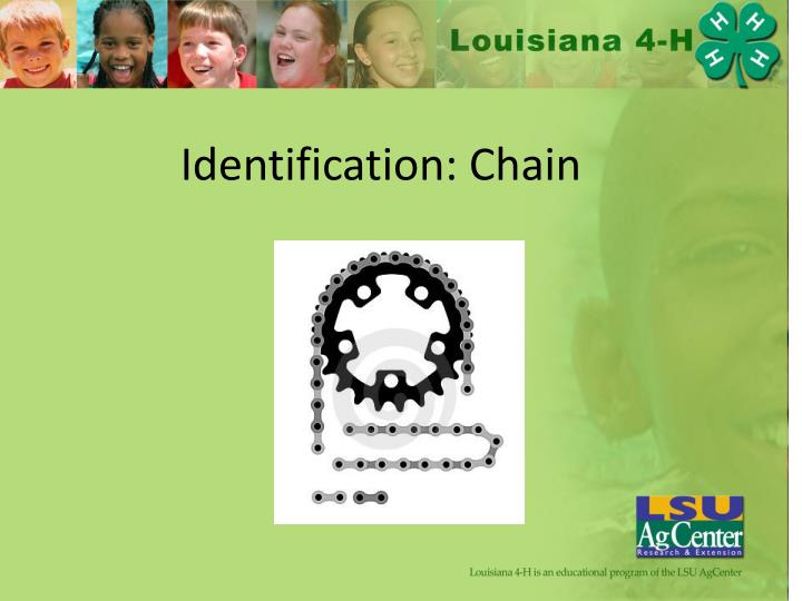 Identification chain