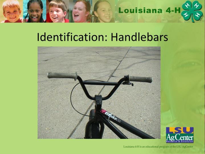 Identification: Handlebars