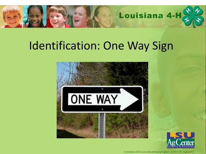 Identification: One Way Sign