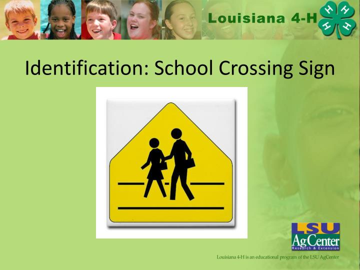 Identification: School Crossing Sign