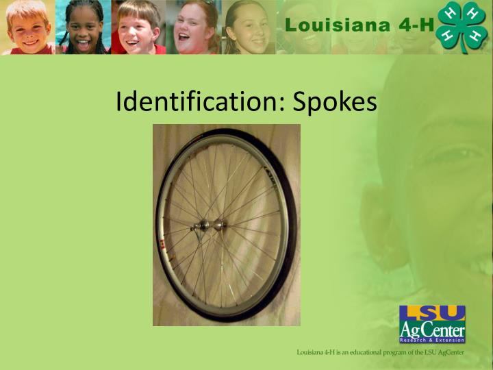 Identification: Spokes