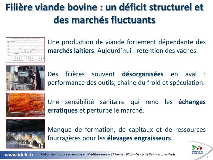 Filière viande bovine : un déficit structurel et des marchés fluctuants