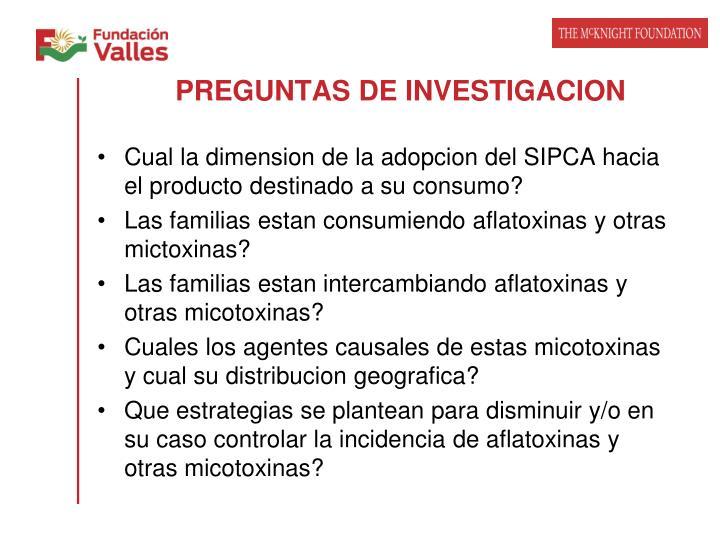 PREGUNTAS DE INVESTIGACION
