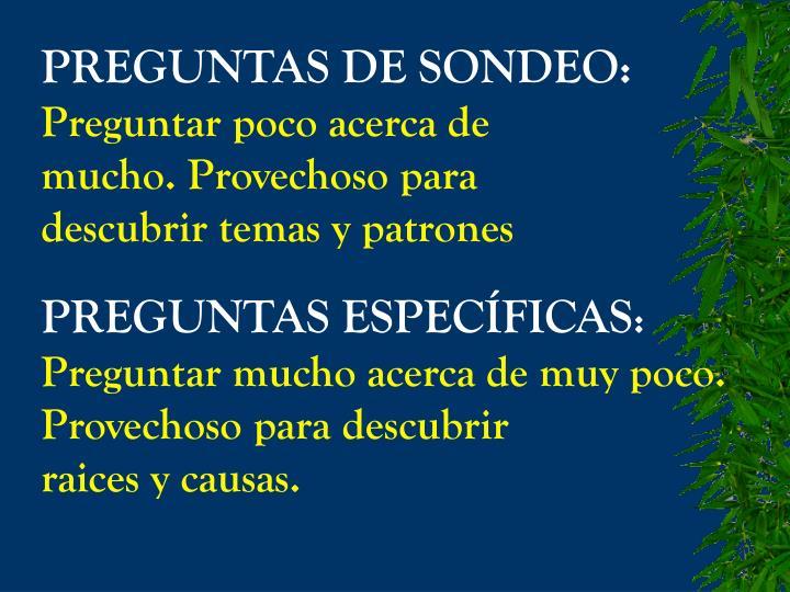 PREGUNTAS DE SONDEO: