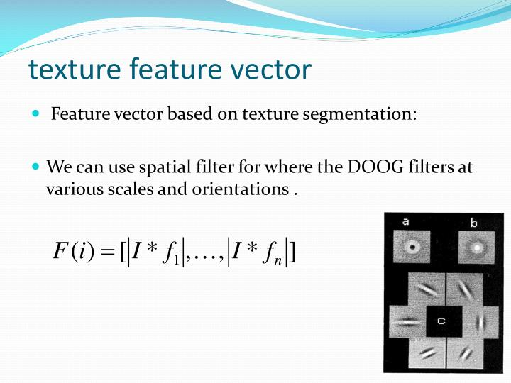 texture feature vector