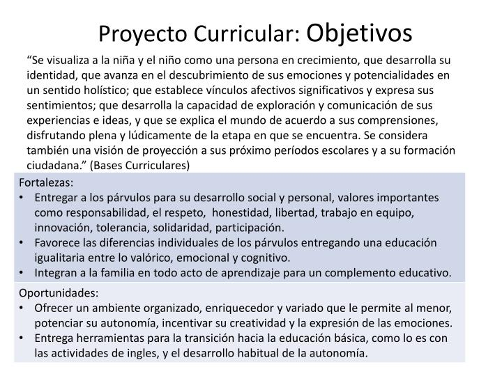 Proyecto Curricular: