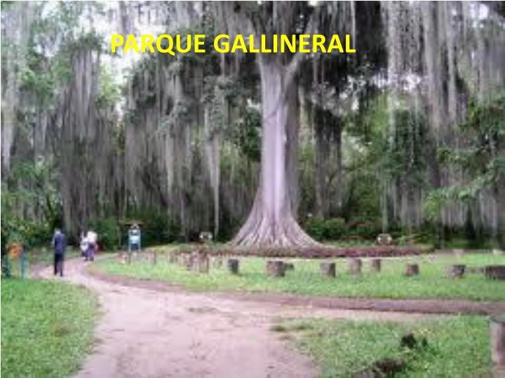 PARQUE GALLINERAL