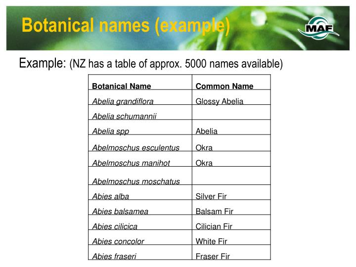 Botanical names example