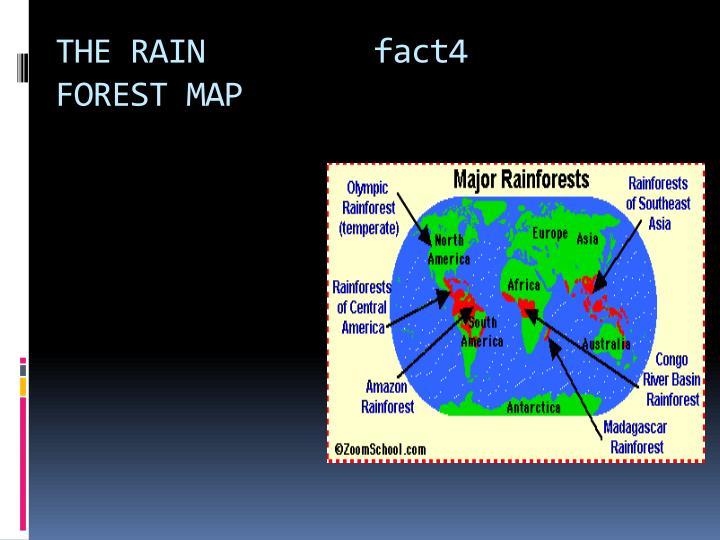 THE RAIN         fact4