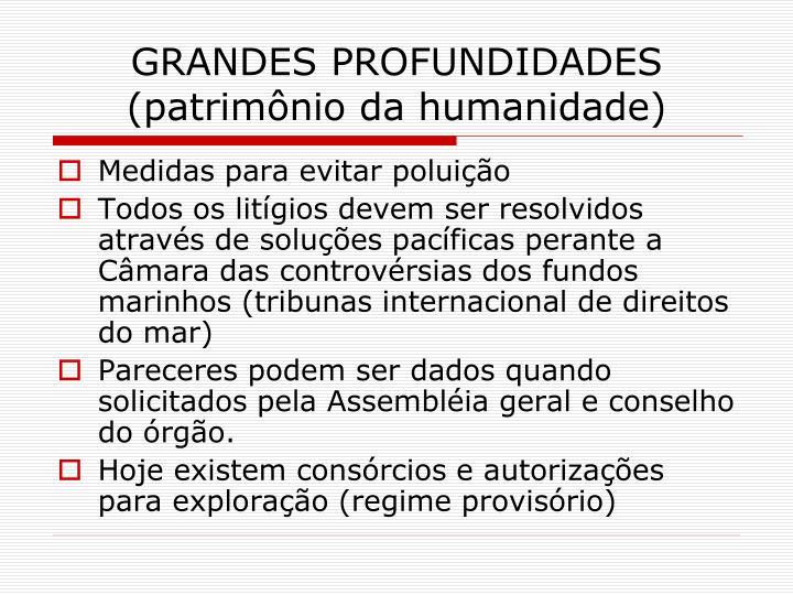 GRANDES PROFUNDIDADES