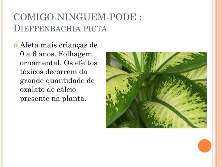 COMIGO-NINGUEM-PODE :