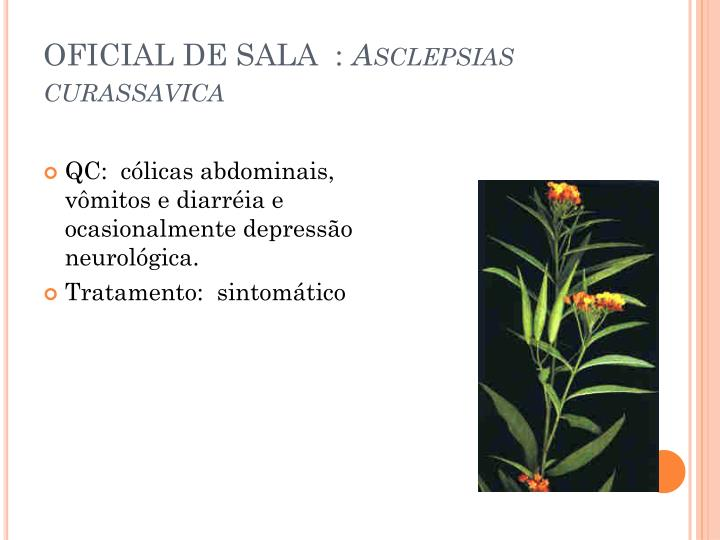 OFICIAL DE SALA  :