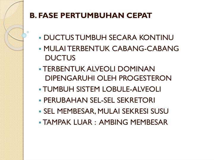 B. FASE PERTUMBUHAN CEPAT