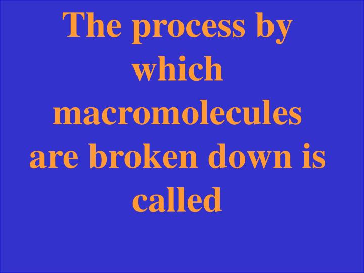 The process by which macromolecules are broken down is called