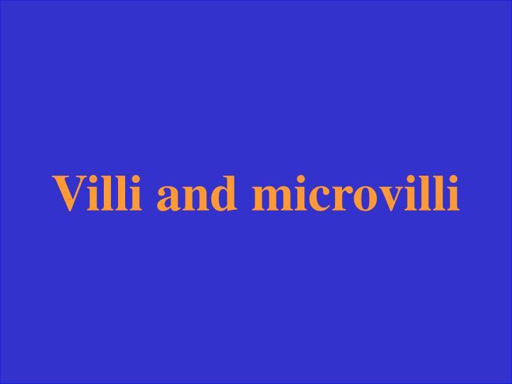 Villi and microvilli