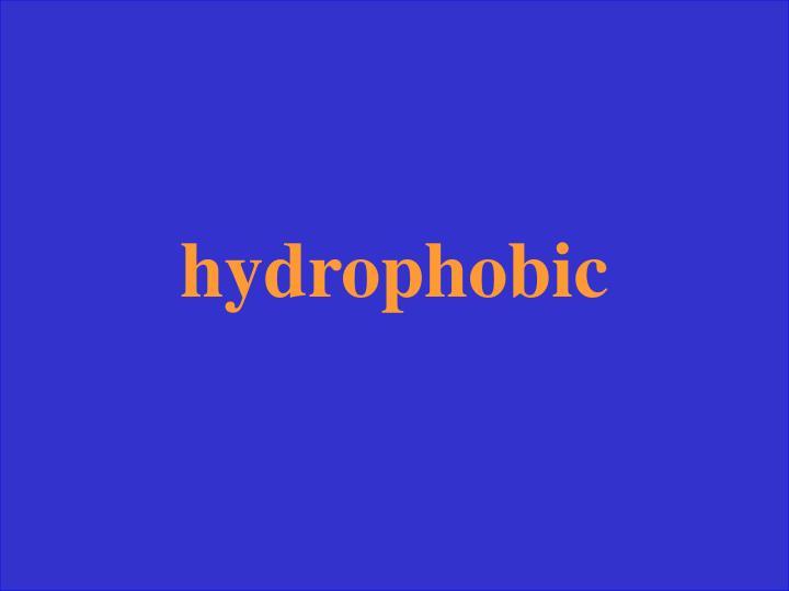hydrophobic