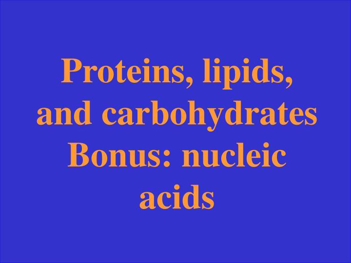 Proteins, lipids, and carbohydrates Bonus: nucleic acids