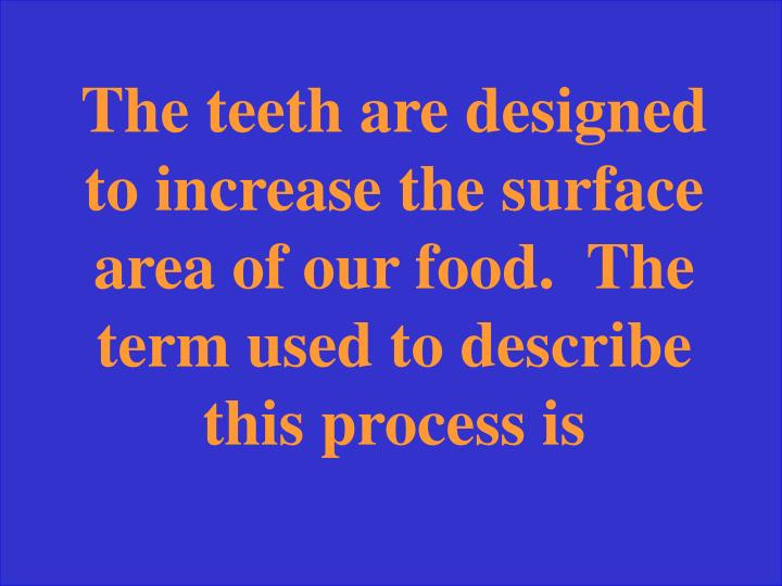 The teeth are designed to increase the surface area of our food.  The term used to describe this process is