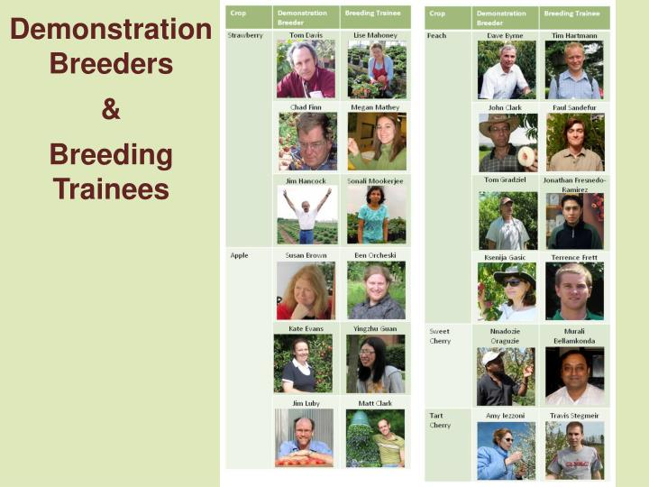 Demonstration Breeders