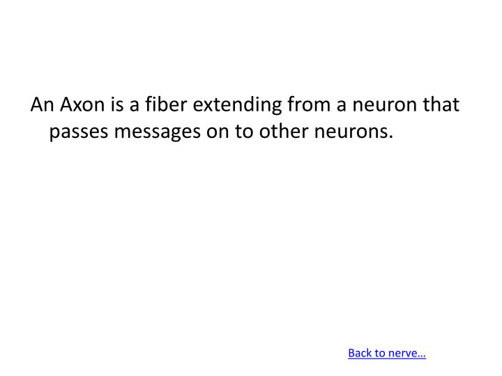 An Axon is a fiber extending from a neuron that passes messages on to other neurons.