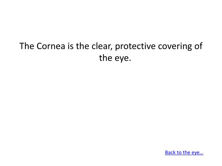 The Cornea is the clear, protective covering of the eye.