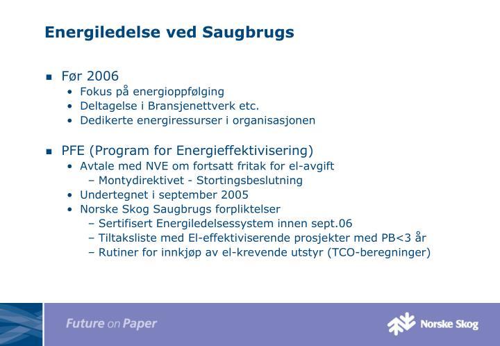 Energiledelse ved Saugbrugs