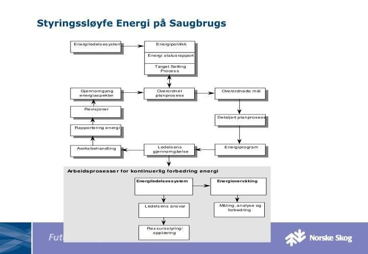Styringssløyfe Energi på Saugbrugs