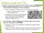 rubisco and low co 2
