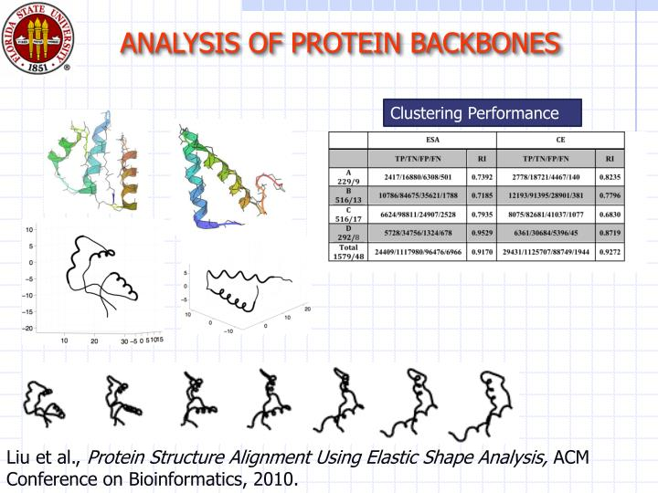 ANALYSIS OF PROTEIN BACKBONES